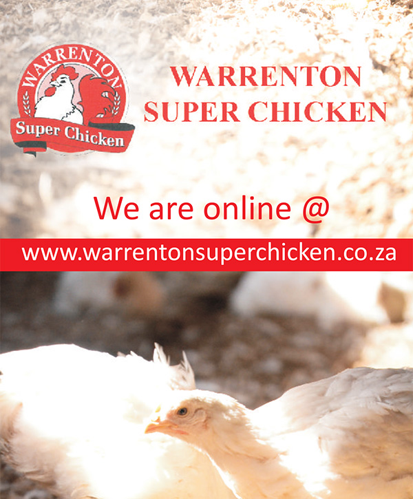 FT-PUBLICATIONS: Trifold Brochure Warrenton Super Chicken